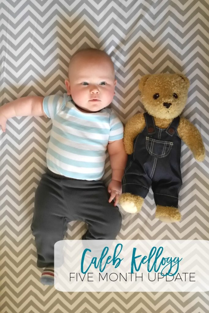 What a precious five month update!  I love the bear shrinking while Caleb is growing!
