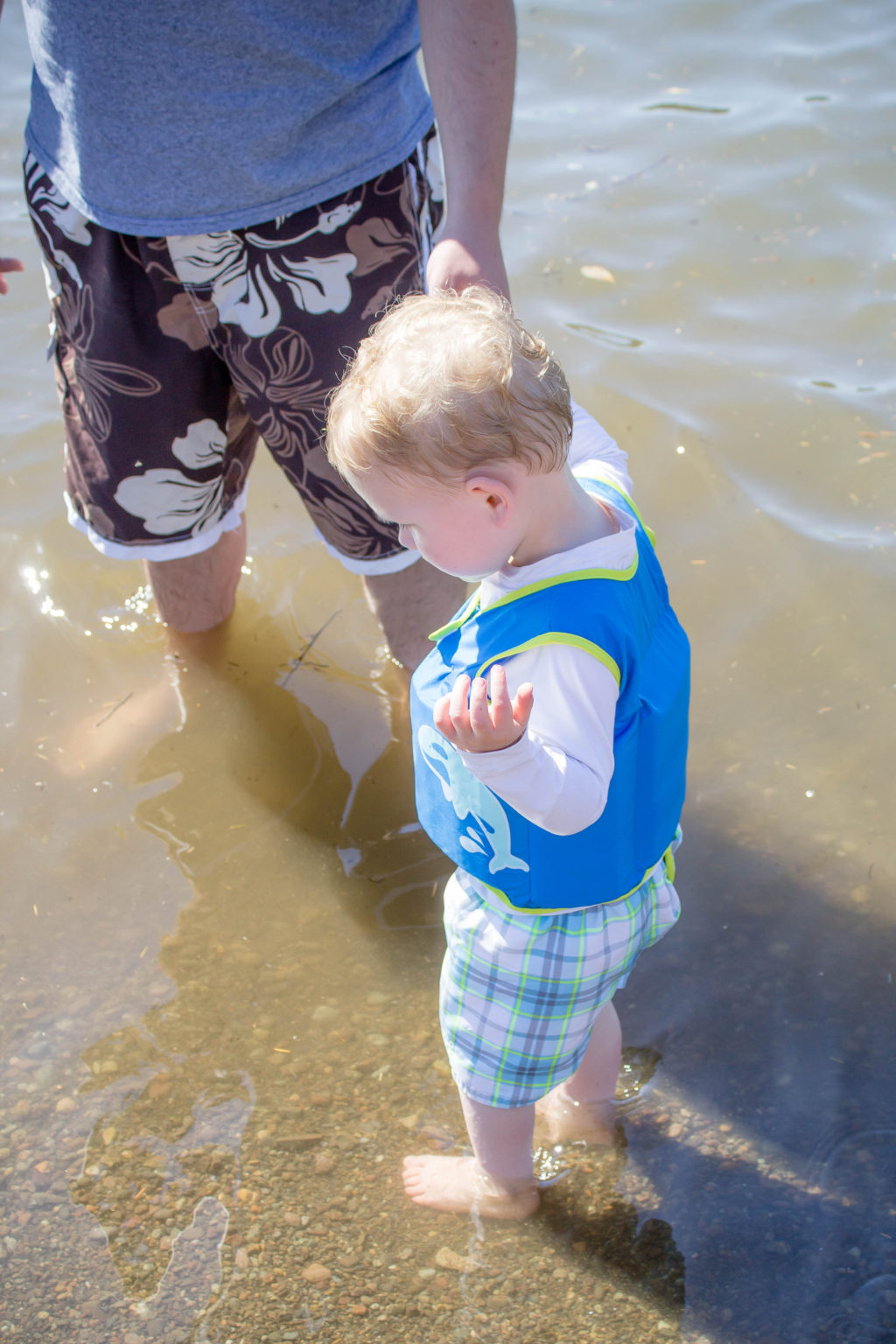 Toddler boy wearing SwimWays vest looking down into the water and holding man's hand
