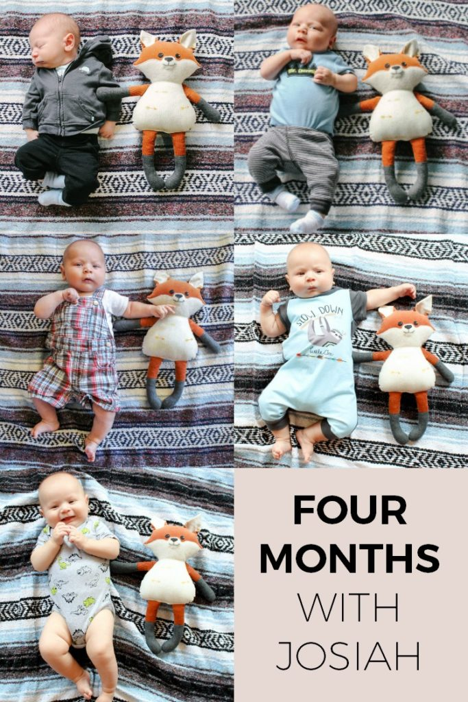 Adorable Monthly Baby Photo Idea