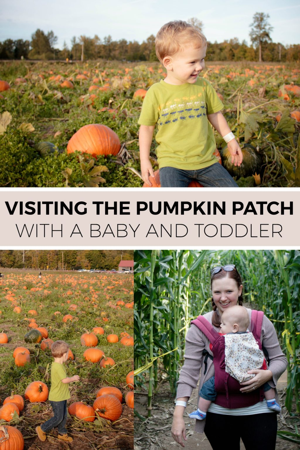 Don't shy away from visiting the pumpkin patch with a toddler and baby!