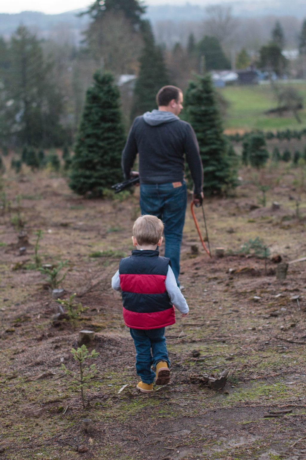 It is totally fun to go Christmas tree hunting with a toddler!