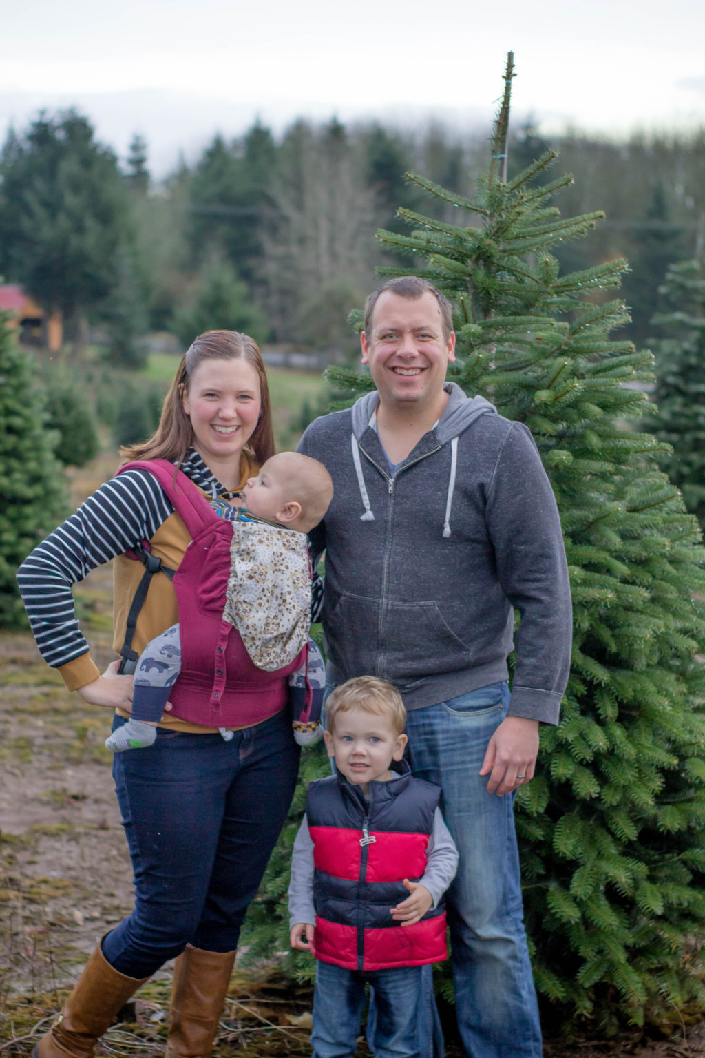 Getting a Christmas tree is a fantastic Christmas tradition