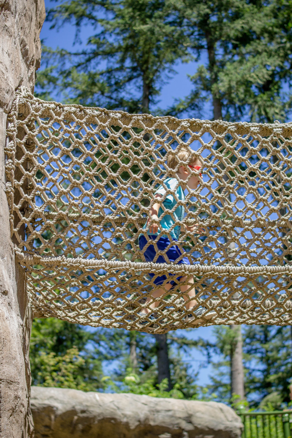 Play at Kids' Trek at Northwest Trek Wildlife Park